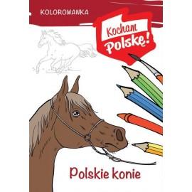 Kocham Polskę Polskie konie